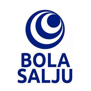 Logo-Brand-Bola-Salju